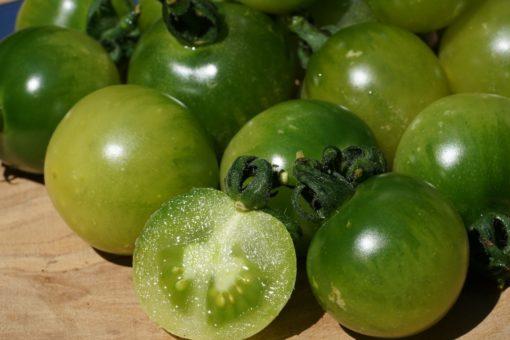 Die Tomate Green Doctors ist eine delikate grüne Kirschtomate.