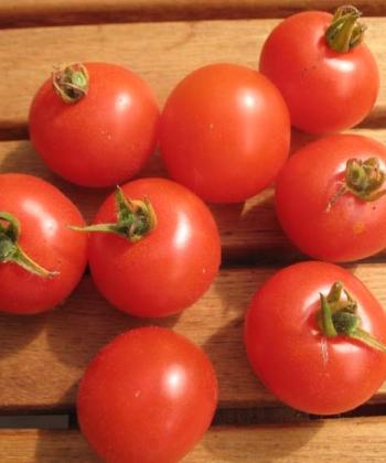 Tomate Angora Supersweet