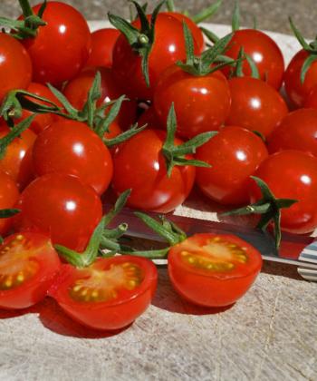 Die Tomate Sweet Aperitif besitzt eine unglaubliche Süße