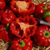 Die rote Paprikasorte 'Benxi' ist geschmacklich und optisch, eine Köstlichkeit auf höchstem Niveau.