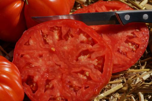 Ganz schöne Brummer: Tomate Brandywine Glicks