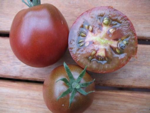 Tomate Japanische Trüffeltomate Braun