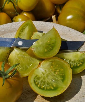 Köstlich und herlich würziger Geschmack zeichnet die Tomate Lime Green aus.