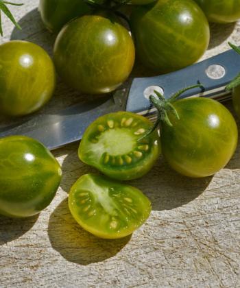 Eine Kulinarisch Besonderheit ist das Aroma der Tomate Grinch Cherry.