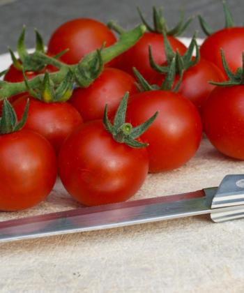 Ob in der Küche oder direkt in den Mund: Spoon bringt Aroma mit.