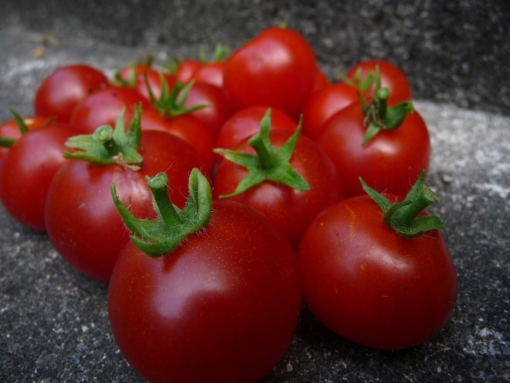 Tomate Roter Rubinius