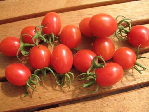 Tomate Teardrops