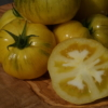 Tomate Dwarf Yellow Wax.