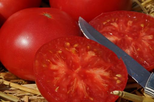 Einfach lecker: Die Heirloom Tomate Missouri Pink Love Apple.