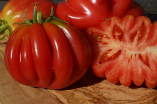 Die Zackentomate ist eine sehr alte Tomatensorte, die schon von den Inkas abgebaut worden sein soll.