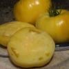 Typisch für die Tomate Giant White Beefsteak ist das leich roetliche Herz der Früchte