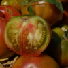 Zum Anbeissen: die aromatische Tomate Copper River.