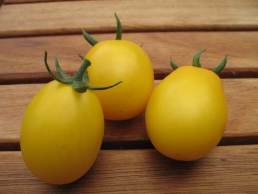 Tomate Japanisches Ei