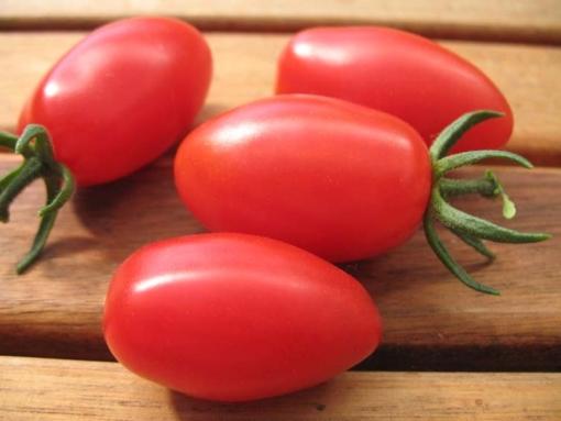 Tomate Lange dünne Bauerntomate aus Honduras