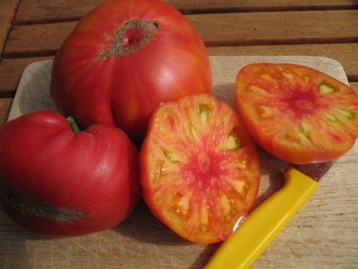 Tomate Yellow Red Stripes Inside